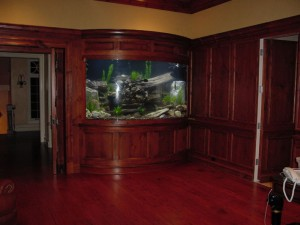 Built-in Bow Front Native Freshwater