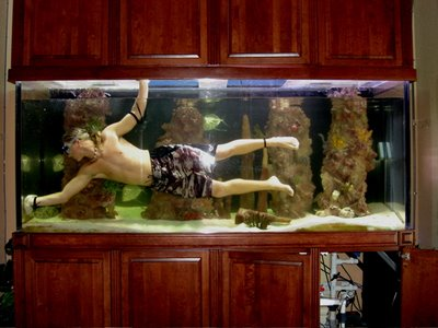 Is A Saltwater Tank Hard To Keep Aquariumpros Inc